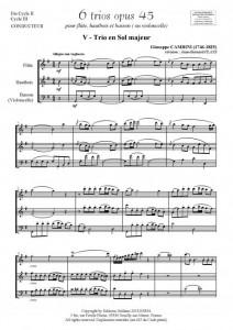 6 trios - VOLUME3 (pour flûte, hautbois et basson ou violoncelle)