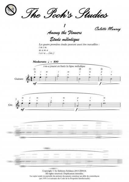 The Pooh's Studies (guitare)