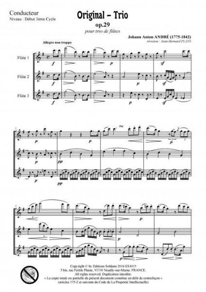 Original-Trio opus 29 (trio de flûtes)
